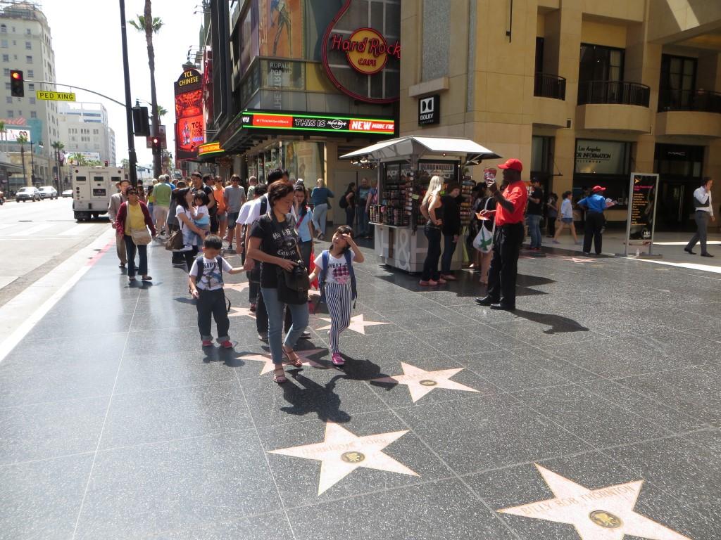 """Auf dem """"Walk of Fame"""" sind inzwischen über 2.500 Sterne zu bestaunen"""
