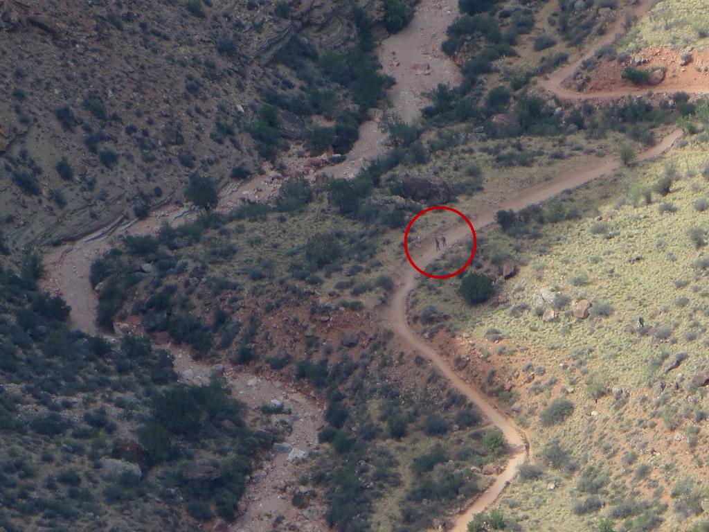 ...bei 20-fachem Zoom erkennt man auf dem rechten Weg jedoch ganz klein zwei Wanderer